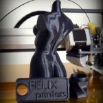 Пример печати Felix 3.0